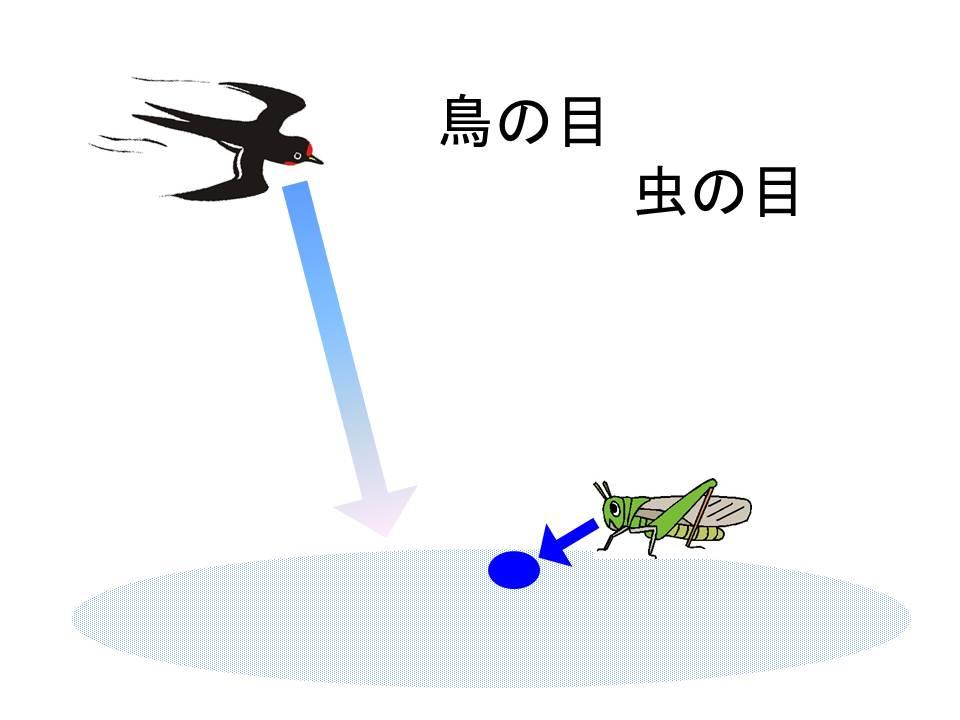 【マインドマップ式プレゼン】鳥の目と虫の目で2つの視点を自在に切り替える