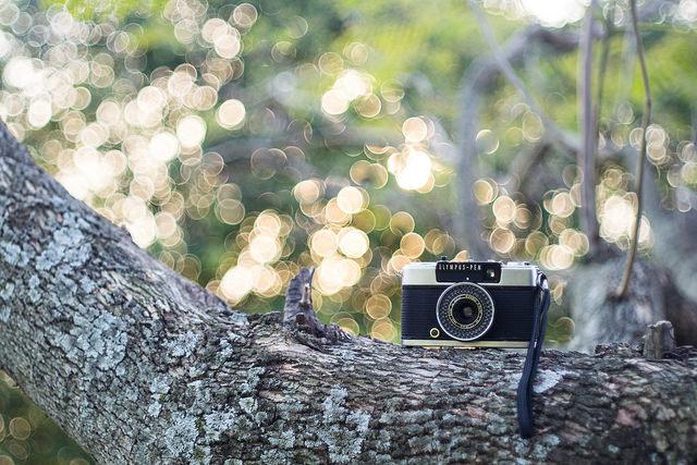 """【糸島移住生活 #034】週末はハーフサイズカメラをもって""""ことりっぷ""""しよう"""